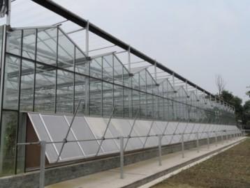 西藏蔬菜玻璃温室